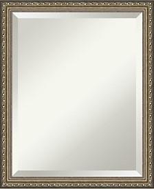 Amanti Art Parisian 18x22 Bathroom Mirror