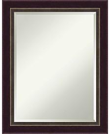 Signore 22x28 Bathroom Mirror
