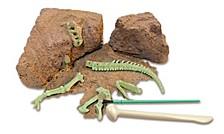Trex Dinosaur Dna Skeleton Science Kit