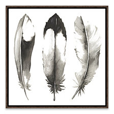 Watercolor Feathers II Framed Printed Canvas
