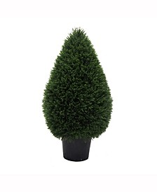 "36"" High X 20"" Wide Cedar Tteardrop Shaped Bush Is Uv Resistant"