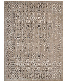 kathy ireland Home KI34 Silver Screen KI343 9' x 12' Area Rug
