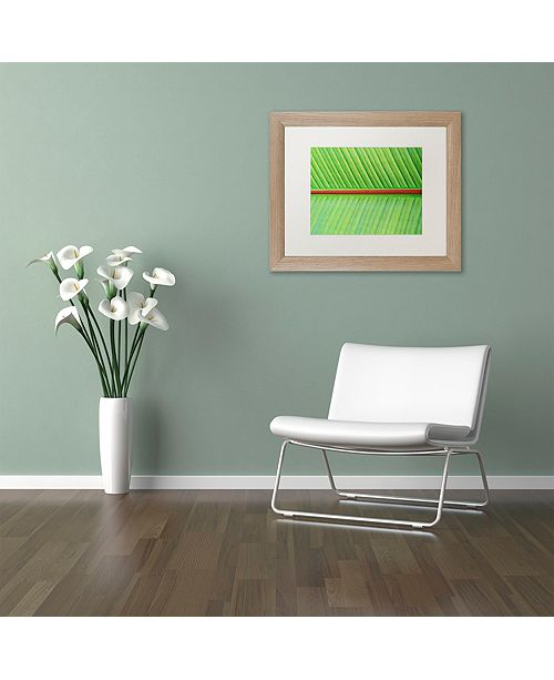 "Trademark Global Cora Niele 'Leaf Texture V' Matted Framed Art, 11"" x 14"""