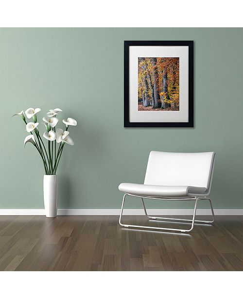 "Trademark Global Cora Niele 'Autumn Beeches II' Matted Framed Art, 16"" x 20"""