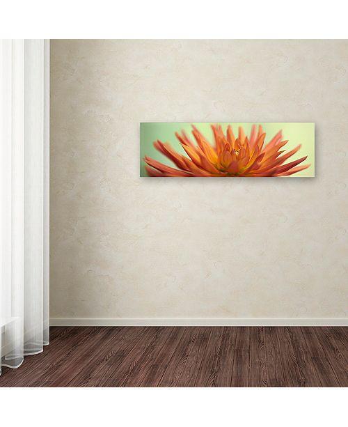 "Trademark Global Cora Niele 'Orange Dahlia Scape' Canvas Art, 10"" x 32"""
