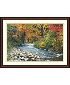 Forest Creek Framed Art Print