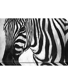 Amanti Art Zebra Canvas Art Gallery Wrap