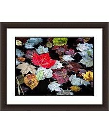 Amanti Art Autumn Leaves  Framed Art Print