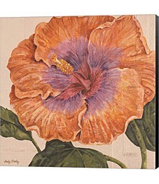 Island Hibiscus II by Judy Shelby Canvas Art