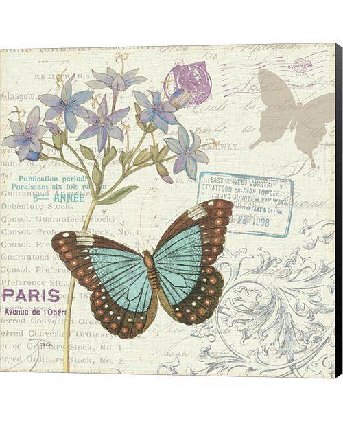 Metaverse Papillon Tales II by Sue Schlabach Canvas Art