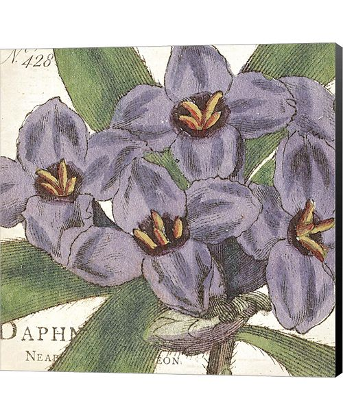 Metaverse Purple Floral by Wild Apple Portfolio Canvas Art