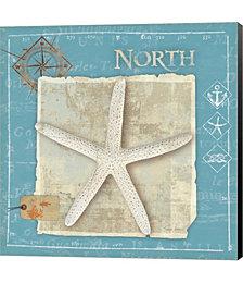 Points North by Belinda Aldrich Canvas Art