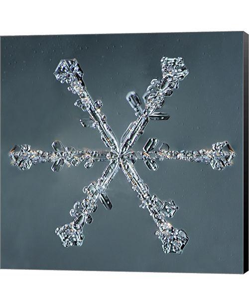 Metaverse Stellar Dendrite Snowflake 004.2.14.2014 by Print Collection Canvas Art