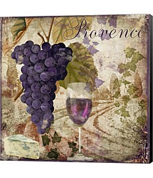 Wine Country III by Color Bakery Canvas Art