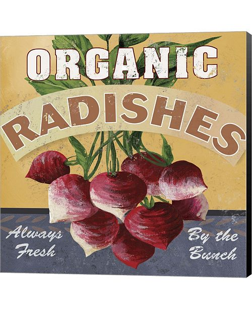 Metaverse Radishes by Fiona Stokes-Gilbert Canvas Art