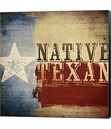 Native Texan by Dallas Drotz Canvas Art