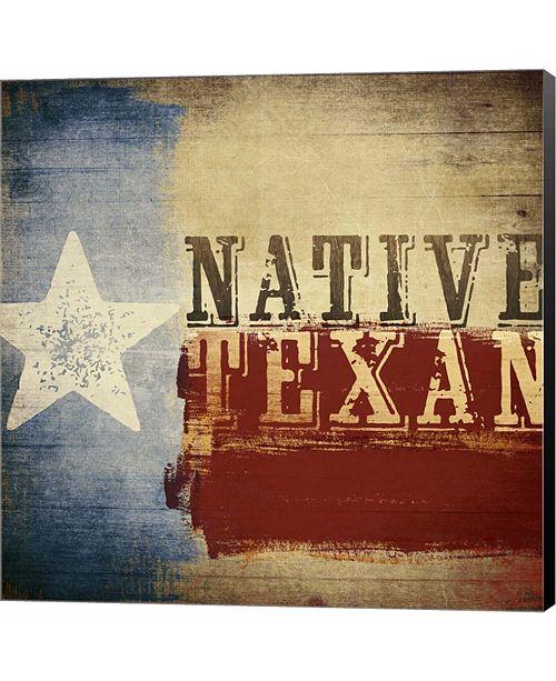 Metaverse Native Texan by Dallas Drotz Canvas Art
