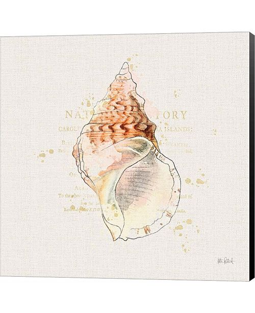 Metaverse Shell Collector III by Katie Pertiet Canvas Art