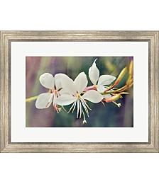 Floral Palette II by Leda Robertson Framed Art
