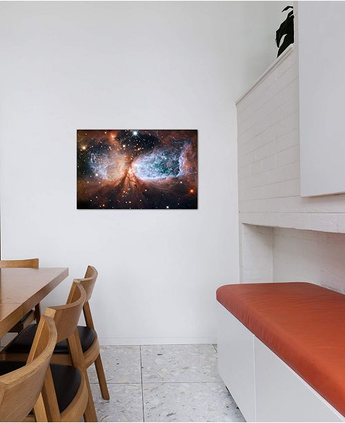 "iCanvas ""Celestial Snow Angel S106 Nebula (Hubble Space Telescope)"" by NASA Gallery-Wrapped Canvas Print"