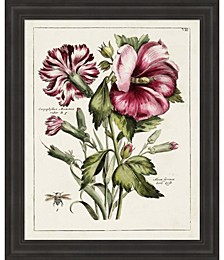 Pink Hibiscus by Unknown Framed Art