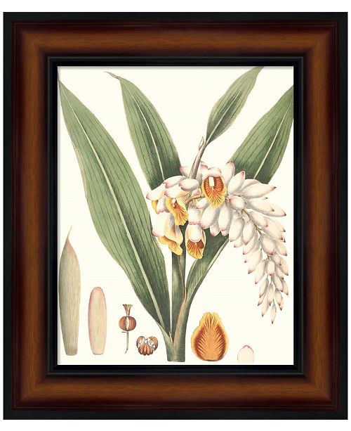 Metaverse Soft Tropical I by George Smith Framed Art