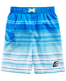 Laguna Little Boys Summer Stripe Swim Trunks