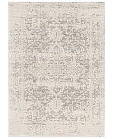 Harput HAP-1024 Gray Area Rug Collection