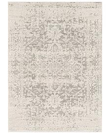 "Surya Harput HAP-1024 Gray 6'7"" x 9' Area Rug"