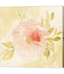 Stardust Peony by Judy Shelby Canvas Art