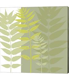 Field Greens by Erin Clark Canvas Art