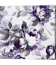Scent of Roses Plum II by Wild Apple Portfolio Canvas Art