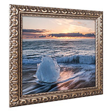 Michael Blanchette Photography 'Crystal Floret' Ornate Framed Art