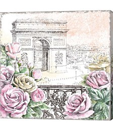 Paris Roses V by Beth Grove