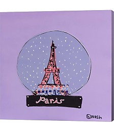 Paris Snowglobe by Brian Nash