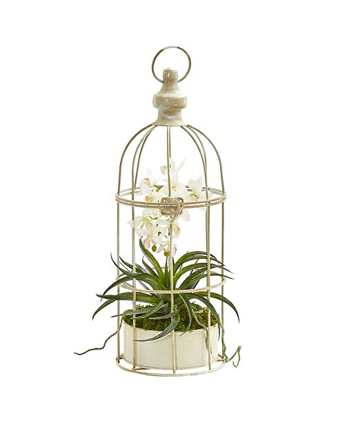 Nearly Natural Mini Phalaenopsis Orchid Artificial Arrangement in Bird Cage