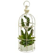 Succulent Garden Artificial Plant in Birdcage