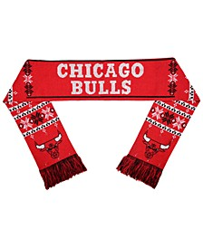 Chicago Bulls Light Up Scarf