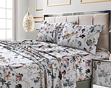 Amalfi Printed 300 Thread Count Cotton Sateen Standard Pillow Pair