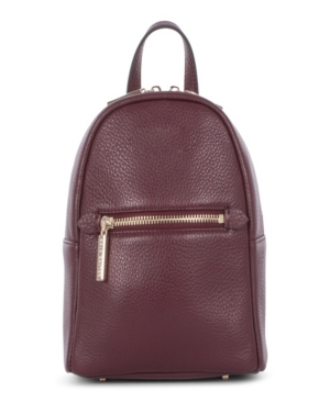 Image of Celine Dion Collection Leather Adagio Backpack