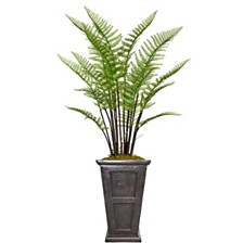 "Laura Ashley 60.8"" Tall Fern Plant Artificial  Greenery Decorative with Burlap Kit and Fiberstone Planter"