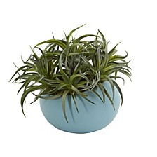 "9"" Succulent Artificial Plant in Blue Planter"