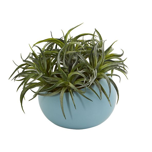 "Nearly Natural 9"" Succulent Artificial Plant in Blue Planter"