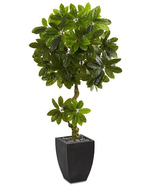 Nearly Natural 5.5' Schefflera Artificial Tree in Black Wash Planter UV Resistant