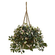 Hoya Artificial Plant Hanging Basket