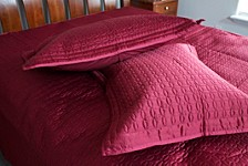 Ancient Coin Polyester Sateen Quilt and Sham Set