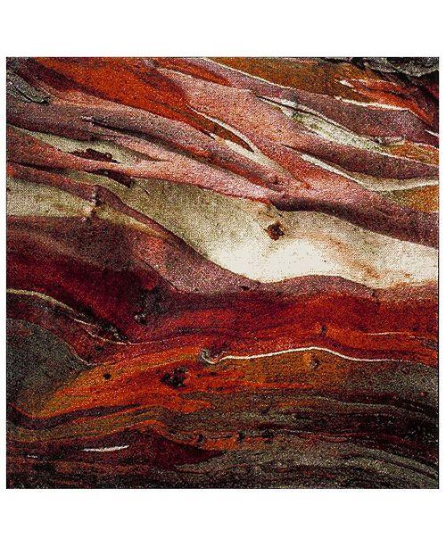 """Safavieh Glacier Red and Multi 6'7"""" x 6'7"""" Square Area Rug"""
