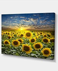 "Designart Field Of Blooming Sunflowers Large Flower Canvas Wall Art - 32"" X 16"""