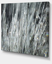 "Designart Raindrops On Grass Black White Oversized Landscape Canvas Art - 40"" X 30"""