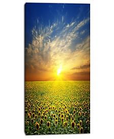 """Designart Beauty Sunset Over Sunflowers Field Floral Canvas Art Print - 16"""" X 32"""""""